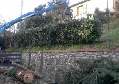 Manutenzione aree verdi Firenze
