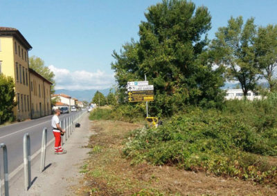 Manutenzione aree verdi Firenze e Quarrata